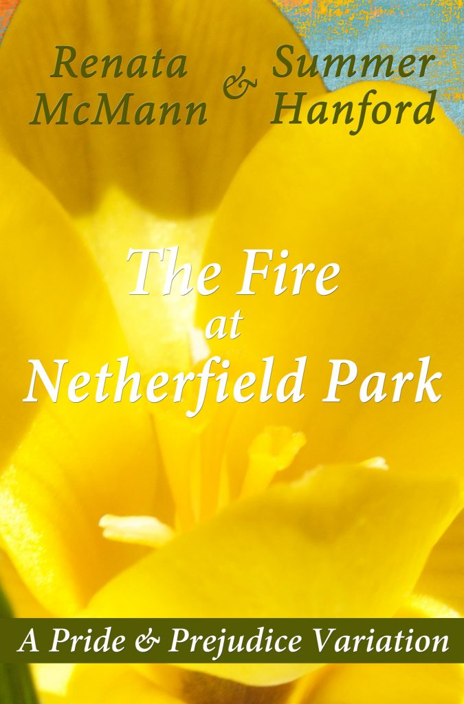 The Fire at Netherfield Park Front Cover
